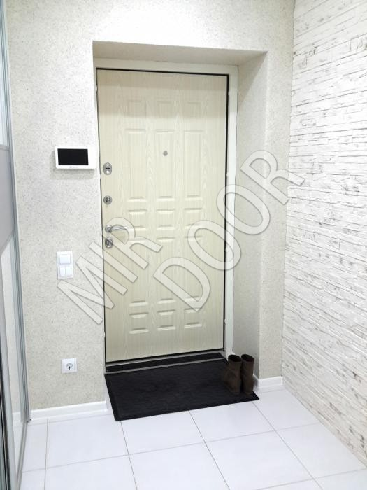 входные двери белый внутри
