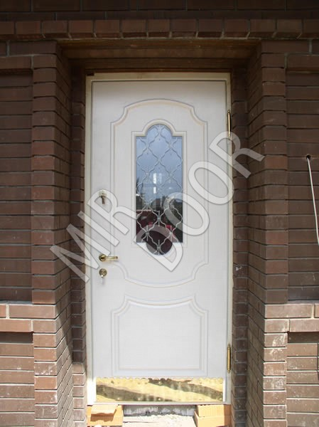 белые двери входные с окном