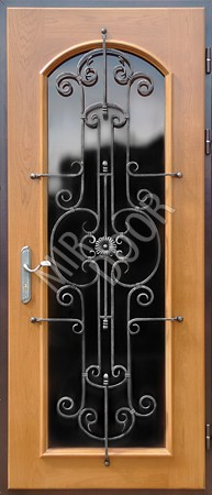 металлические двери с большим стеклом