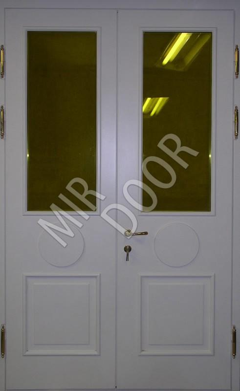 металлические двери двухстворчатые со стеклом в тамбур