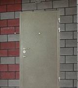 Дверь порошковое напыление